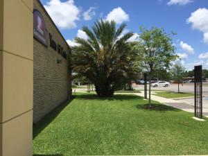 texas-endoscopy-center-012a